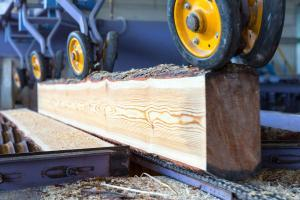 Lumber Length Measurement in Sorting Lines